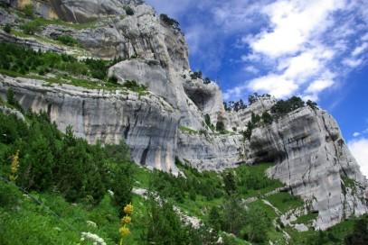Calcaire Chartrousin